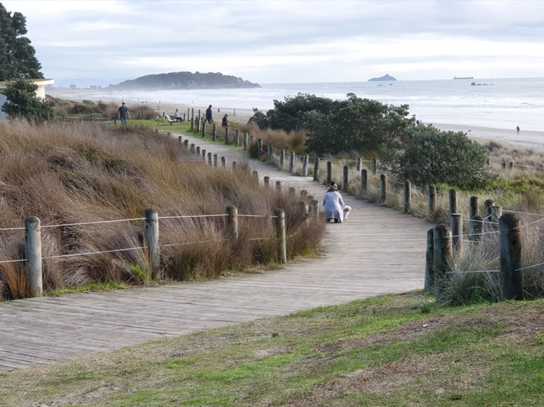 Mt Maunganui Boardwalks